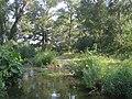 River Alma1.JPG