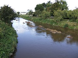 River Deel - geograph.org.uk - 581931.jpg
