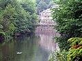 River Derwent - geograph.org.uk - 462174.jpg