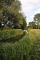 River Gipping downstream of Needham Market - geograph.org.uk - 850267.jpg
