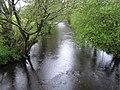 River Teign at Clifford Bridge - geograph.org.uk - 438449.jpg