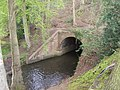 River Tern flowing under Shropshire Union Canal - geograph.org.uk - 787417.jpg