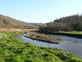 River camel Feb2008.JPG