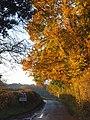 Road approaching Binfield Heath - geograph.org.uk - 1049617.jpg