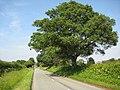 Road approaching Himbleton - geograph.org.uk - 846281.jpg