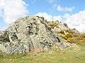 Rock outcrop - geograph.org.uk - 786469.jpg