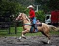 Rodeo in Panama 02.jpg
