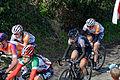 Ronde van Vlaanderen 2015 - Oude Kwaremont (16867195190).jpg
