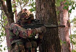Royal Marines selection and training - Wikipedia