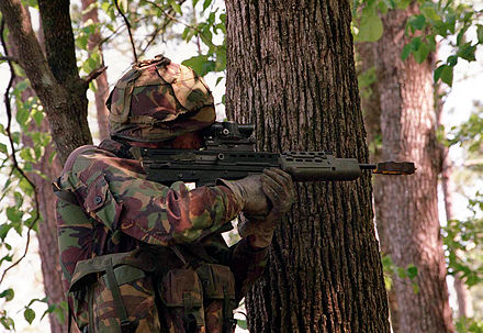 A Royal Marine stands beside a tree to sight in his weapon during a training exercise