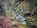 Ruisseau de saint Nicolas, en aval de la cascade. (2).jpg