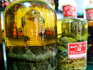 Snake wine alcoholic beverage brewed with snakes