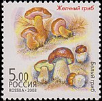 Russia stamp 2003 № 880.jpg
