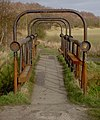 Rusty footbridge over the River Torne - geograph.org.uk - 1203221.jpg