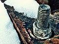 Rusty nut and bolt 10 365 (16061316010).jpg