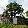 Saalburg Mauer und Baum (9352483135).jpg