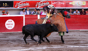 "Bullfighter - A ""picador"""