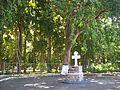 Santísima Cruz de Mayo de San Felipe.jpg