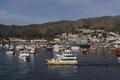 Santa Catalina Island, a rocky island off the coast of California LCCN2013634822.tif