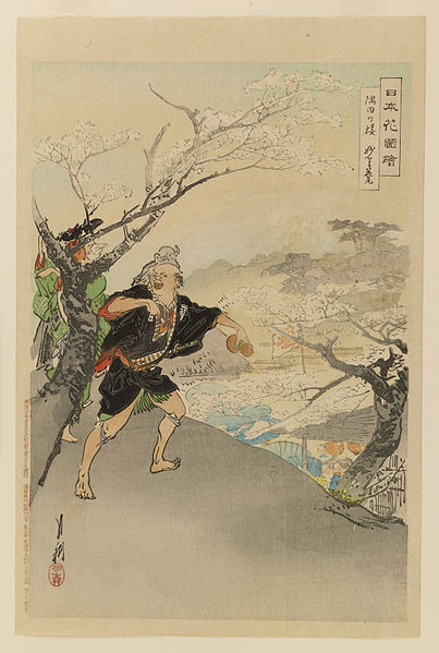 File:Sasaki Toyokichi - Nihon hana zue - Walters 95224.jpg