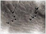 Savoia Marchetti SM.81 stormo in volo.jpg