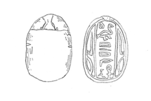 Scarab seal of Shenshek. Egyptian Museum (TD-6160[50])