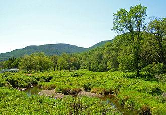 Schoharie Creek - Schoharie Creek near its source in the Catskills