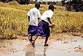 School Girls in Sumbawanga- Tanzania.jpg