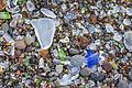 Sea Glass on Glass Beach near Fort Bragg.jpg