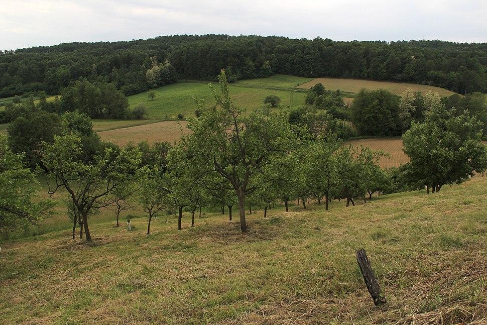 Selo Kotešica - opština Valjevo - zapadna Srbija - Panorama 17