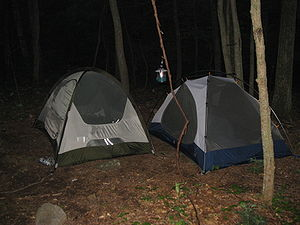 Two tents in a backcountry campground.