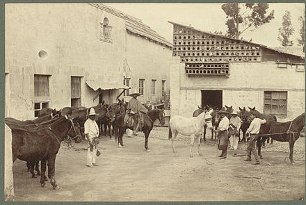 Shoeing Mules (Mexican Village Scene). Photo by Abel Briquet. Although mechanization was taking hold during the Porfiriato, much labor was still performed by humans and animals. Shoeing the Mules (Mexican Village Scene).jpg