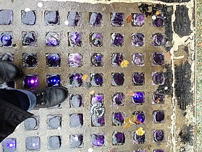 view down onto a sidewalk with vault lights; a slab of concrete with a regular grid of inset squares of slightly domed purple glass. Within each square, faint vertical lines can be seen through the glass, and points of light shining up through the glass are duplicated in horizontal lines of three points of light. Some yellow leaves have fallen on the damp concrete.