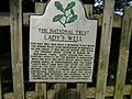 Sign outside Lady's Well - geograph.org.uk - 577327.jpg