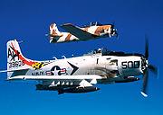 Skyraider USMC