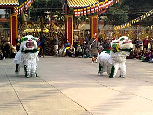 Snow Lion - Tibetan Snow Lion Dance, Bodhgaya, India