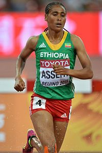 Category:Sofia Assefa - Wikime...