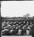 Soldier's graves near General Hospital.png