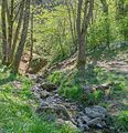 Source of Aveyron River A.jpg