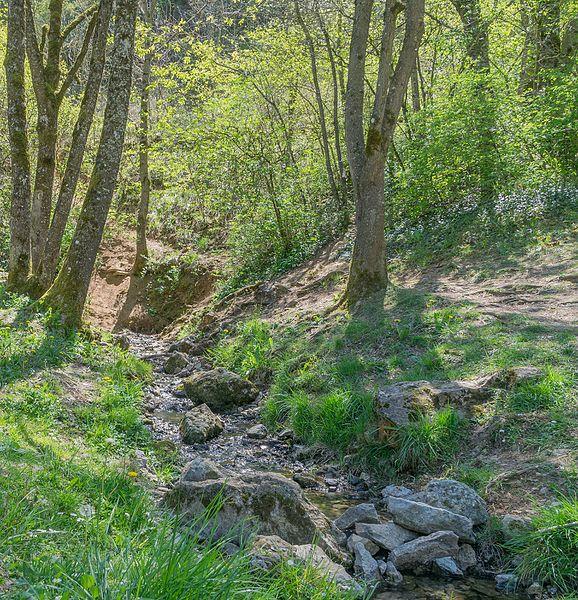 Source of Aveyron River, Sévérac-le-Château, Aveyron, France