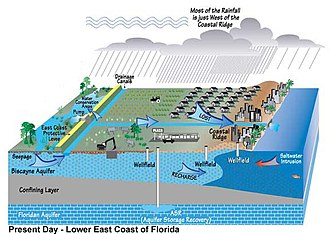 Restoration of the Everglades - Current water drainage patterns in South Florida in 2005