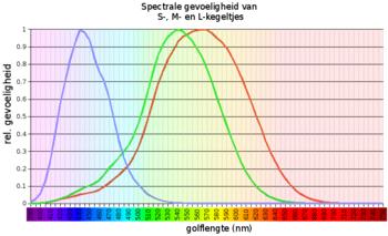 Spectrale gevoeligheid van kegeltjes