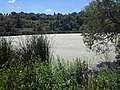 Spring Lake, June 2016.jpg