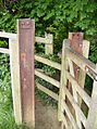 Squeeze kissing gate - geograph.org.uk - 467828.jpg