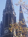 St. Patrick church steeples in Elizabeth, NJ.jpg