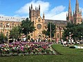 St Mary's Cathedral Sydney.jpg