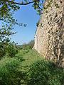 Stadtmauer Neuleiningen- 10.JPG