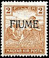 Stamp Fiume 1918 2f ovpt.jpg