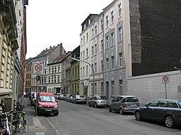 Stegwiese in Köln