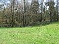 Stile at entrance into woodland at Mount Noddy - geograph.org.uk - 1239077.jpg